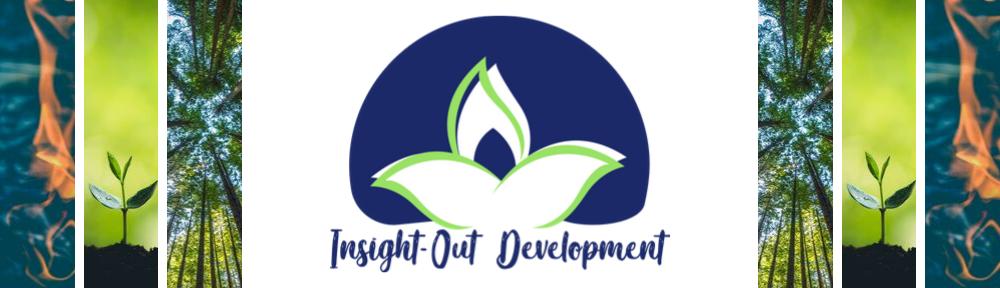 Insight-Out Development